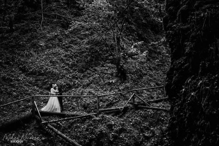 Fotografie album 'Adriana & Ciprian'
